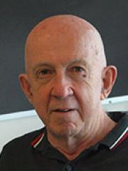 Professor Martin Lavin